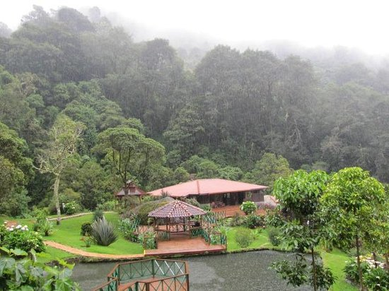 Trogon Lodge San Gerardo de Dota: Looking down at the facility from our cabin