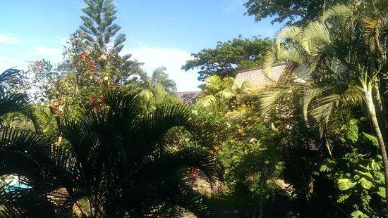 Hotel Vila Lumbung: Grounds