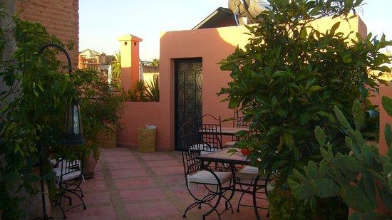 Riad Al Rimal: Un rincón de la terraza a primera hora de la mañana