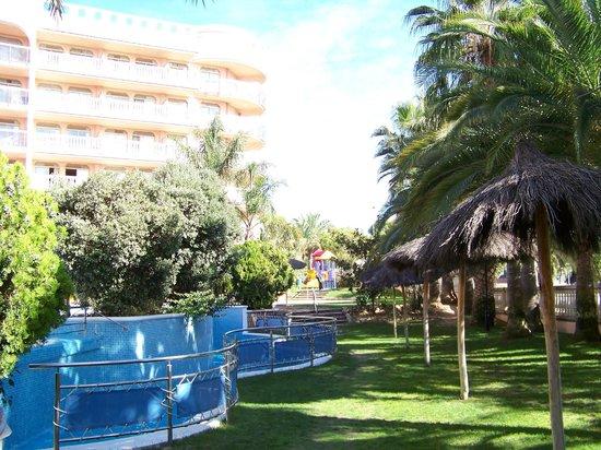 Hotel-Aparthotel Dorada Palace: Piscine