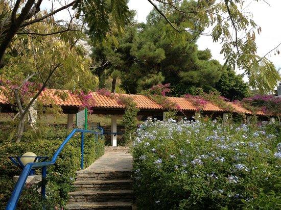 Hapimag Resort Sea Garden : Lovely gardens.