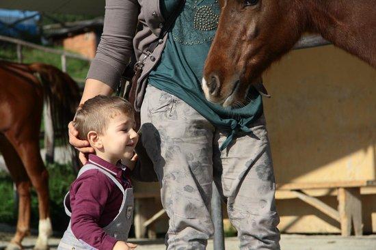 Toscana Ranch: l'amore del mio cucciolo per i cavalli