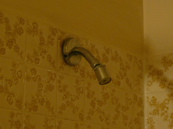 Canadas Best Value Inn: showerhead (looks old but it is good and powerful!)