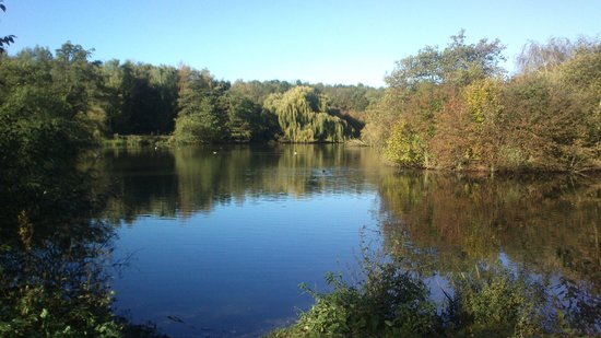 Bestwood Winding Engine House: The lakes on an Autumn day