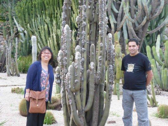 Excursions Barcelona : cactus garden