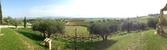 Tramonto su Assisi: La mattina si fa colazione con questo panorama!