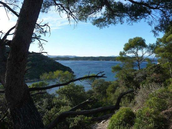 National Park of Port-Cros: Vue depuis le chemin menant au fort, en surplomb de la baie