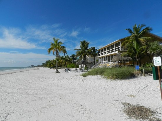 Tiki On The Beach: Not to crowded...