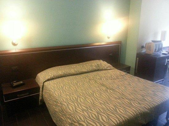 HL Hotel Campidoglio: Letto camera.207