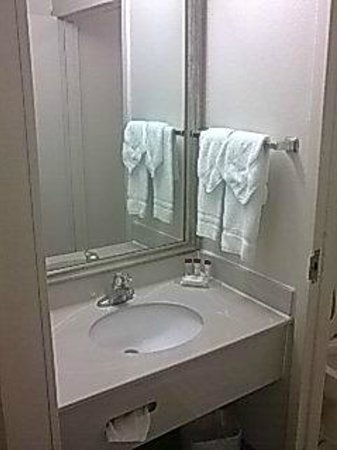 Ramada Orlando Near Convention Center : Threadbare towels