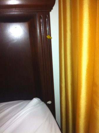 Washington Suites Alexandria : Pic of gum and headboard