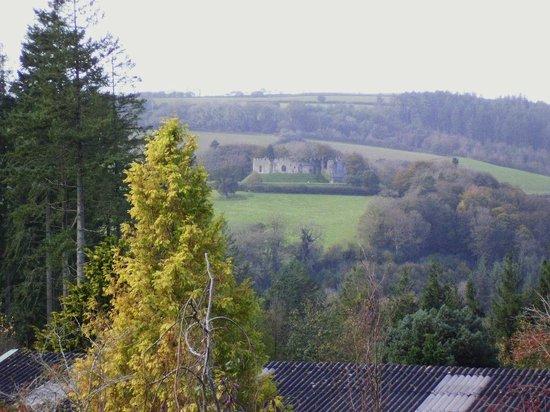 Duchy of Cornwall Nursery & Cafe: View across to Restormal castle