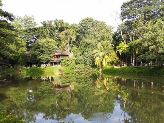 Lampang River Lodge: Alrededores