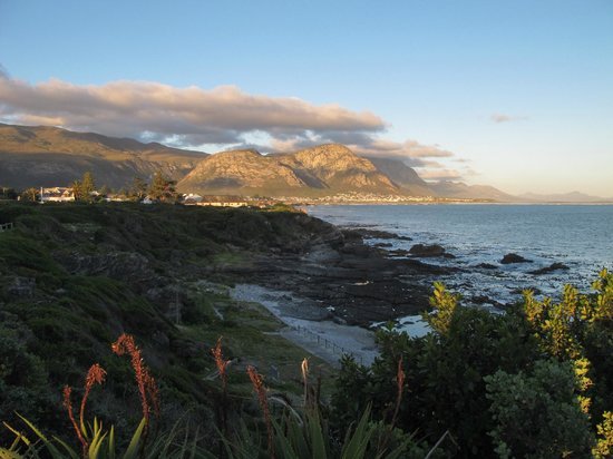 The Marine Hermanus: Hotel in distance