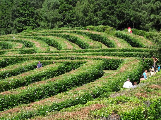 Labyrinthe Géant des Monts de Guéret : Labyrinthe géant 4.5 km d'allées