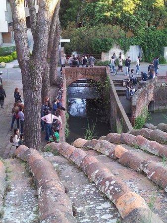 Passeggiata sulle mura di Pisa : Le Venezie viste dalle mura di Pisa