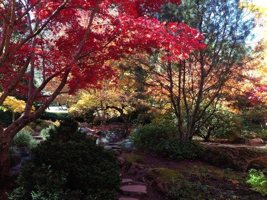 Ashland Creek Inn: japanese garden ashland, OR