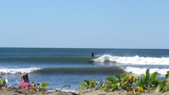 Surf With Amigas- Women's Surf and Yoga Retreat: Beach Shred!
