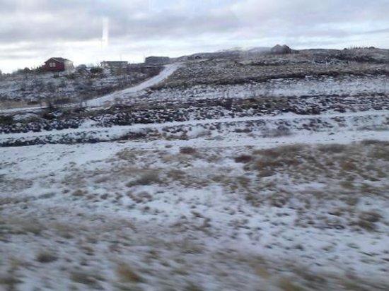 Icelandair Hotel Reykjavik Natura: View on tour
