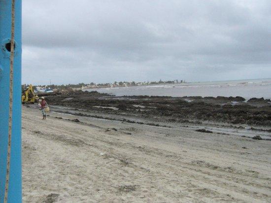 Winzrik Resort & Thalasso Djerba : plage du Laico pendant notre séjour