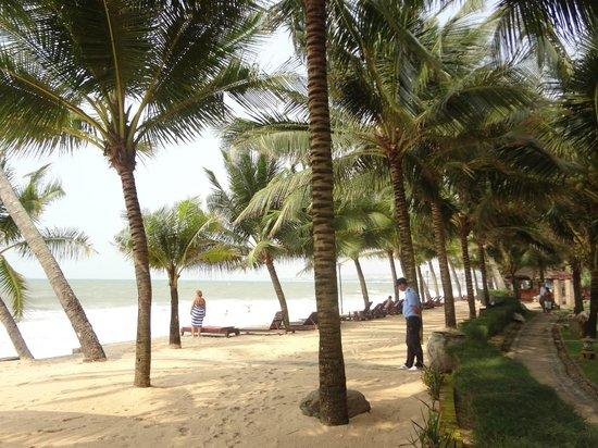 Oriental Pearl Beach Resort: Гостиничный пляж