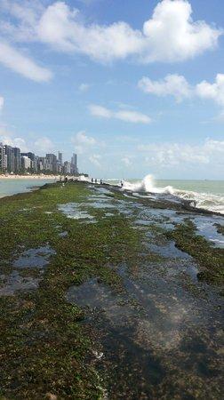 Golden Tulip Recife Boa Viagem: Praia de Boa Viagem em frente ao hotel