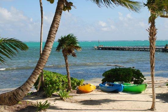 La Perla Del Caribe: La Perla kayaks & pier