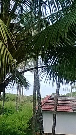 The Malabar Beach: View from Room