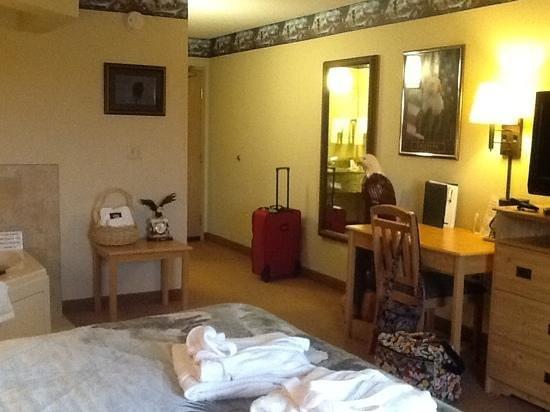 AmericInn Lodge & Suites Princeton: Nice sized room
