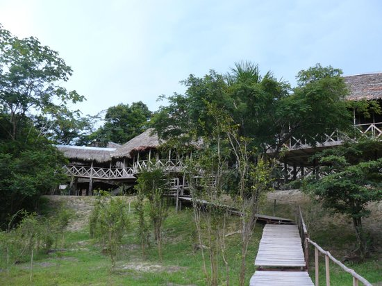 Amazonia Expeditions' Tahuayo Lodge: The Amazon Research Centre
