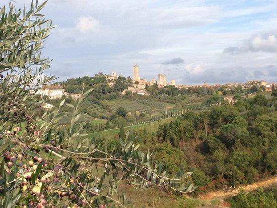 Podere Bellavista : San Gimignano