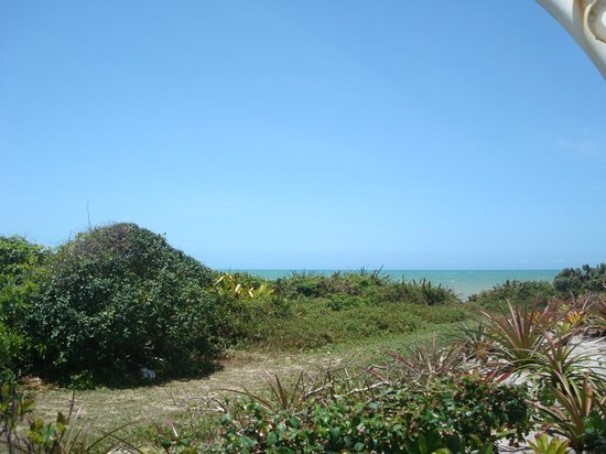 jardim plantas nativas:Quiosque, jardim de plantas nativas,visual para o mar azul turquesa
