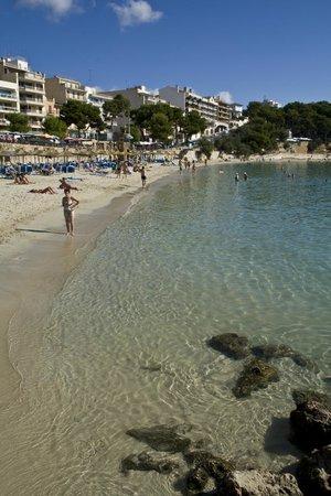 Hotel Mediodia: Plaja de Porto Cristo (Porto Cristo, Maiorca)