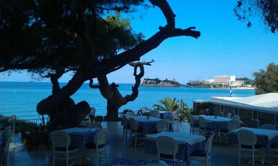 Sani Club: Ouzerie Sani Beach Club