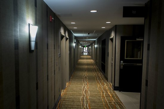 Hampton Inn & Suites Lansing West: Hallway