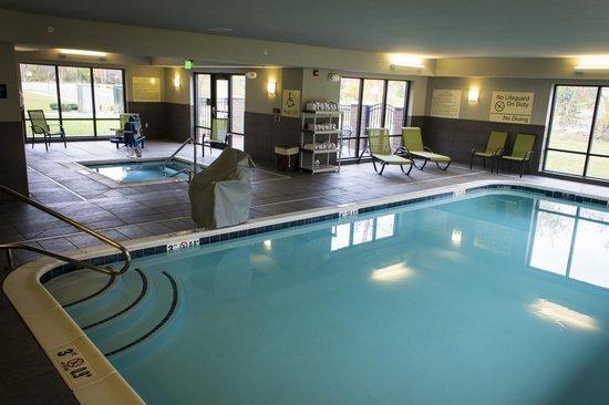 Hampton Inn & Suites Lansing West: Swimming Pool