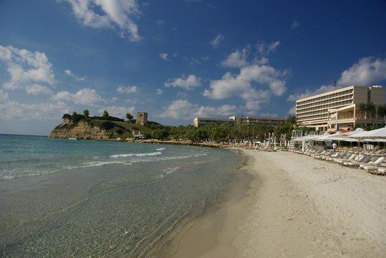 Sani Club: Strand Beach Hotel