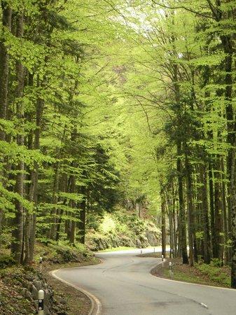 Thermal Hotels und Walliser Alpentherme & Spa: Дорога в отель