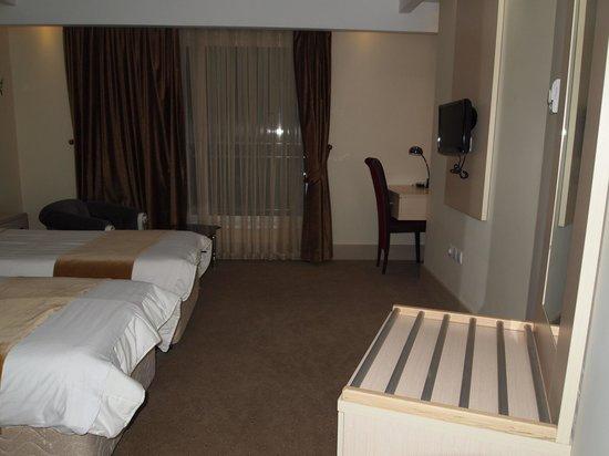 Safir Hotel: 室内はきれいです。