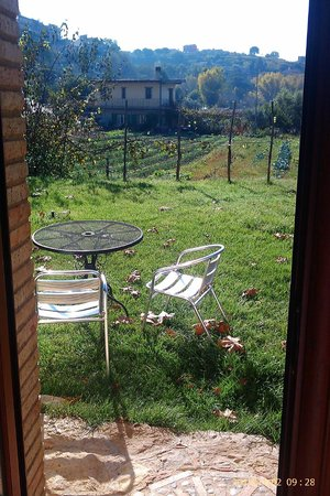 Giucalem B&B : A Room with a View