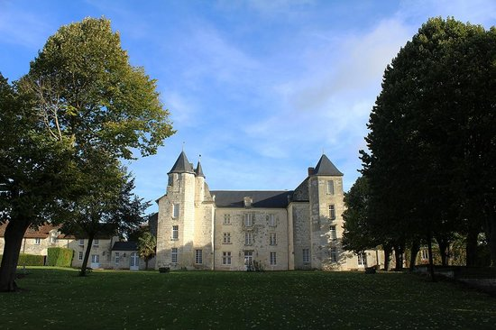 Château de Marçay  : le chateau vue de l'autre cote