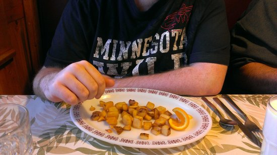 Duncan House Diner : Side of hashbrowns.  Took the photo immediately after served.