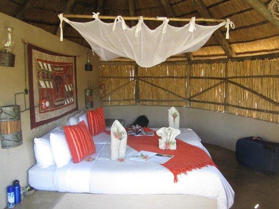 Umlani Bushcamp : the room