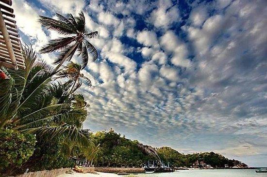 View of of Ko Tao Resort beach