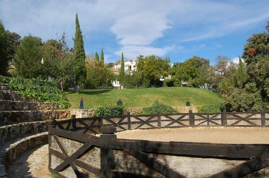 Finca Los Pastores: View at the finca