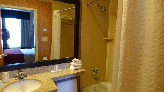 Comfort Inn: よくあるシャワールーム