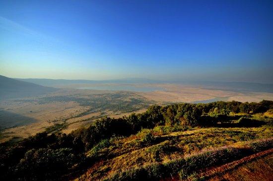 Ngorongoro Wildlife Lodge: Aussicht