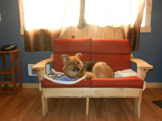 Twisp River Suites : Even your pets can relax!