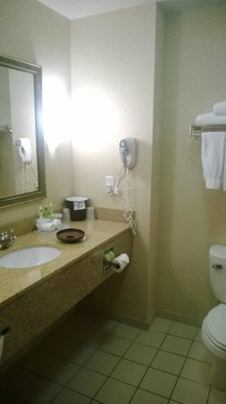 Holiday Inn Express Hotel & Suites Bay City: bathroom