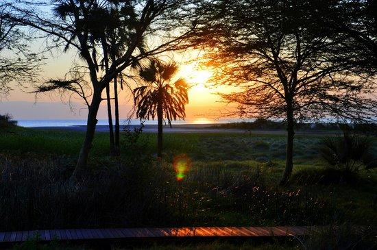 Kisima Ngeda Tented Camp : Aussicht aus Zelt